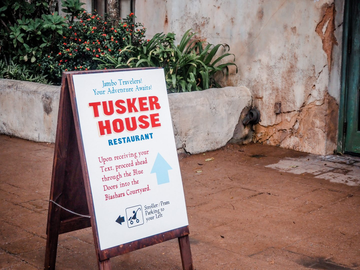 Where is Tusker House at Animal Kingdom